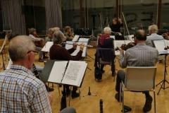 1_P1100378-orkestret-set-bagfra